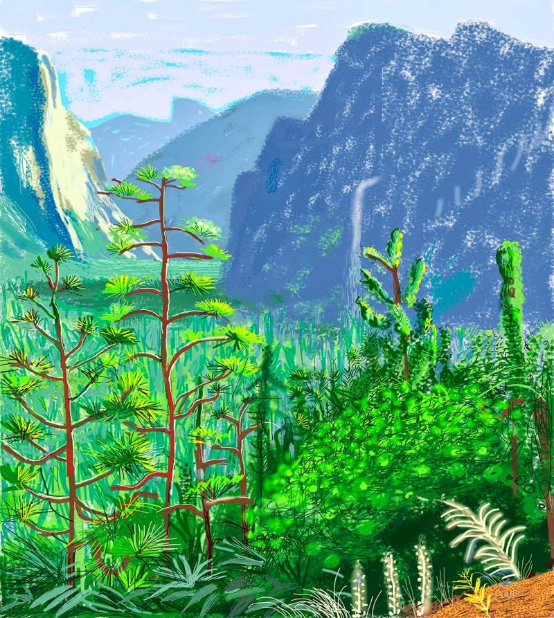 David Hockney A Bigger Exhibition