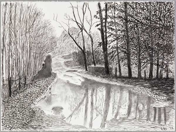David Hockney Ink Drawings 2013 David Hockney