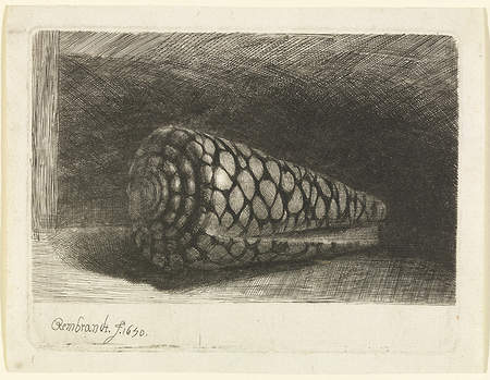 Rembrandt's The Shell, 1650