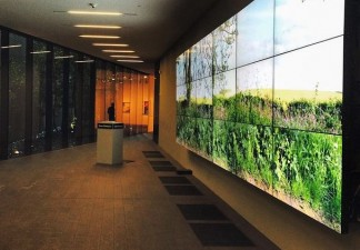 David Hockney, Seven Yorkshire Landscape Videos, 2011. Eighteen digital videos synchronized and presented on eighteen 55-inch NEC screens to compromise a single artwork. Courtesy of the artist