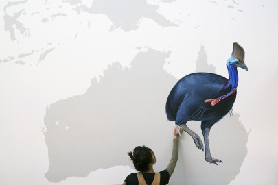 Jane Kim, details from From So Simple a Beginning: Celebrating the Diversity and Evolution of Birds, 2014–2015. Acrylic and house paint on wall, 70 x 40 ft.