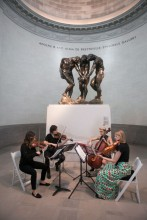 Amaranth quartet at the Legion of Honor museum