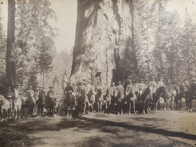 Grizzly Giant with Troop F in Mariposa Big Tree Grove, California after treatment