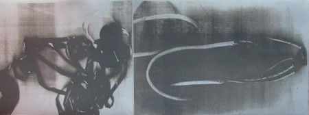 Carrie Iverson, Evidence I, 2012. Toner lithograph, 11 x 30 in.