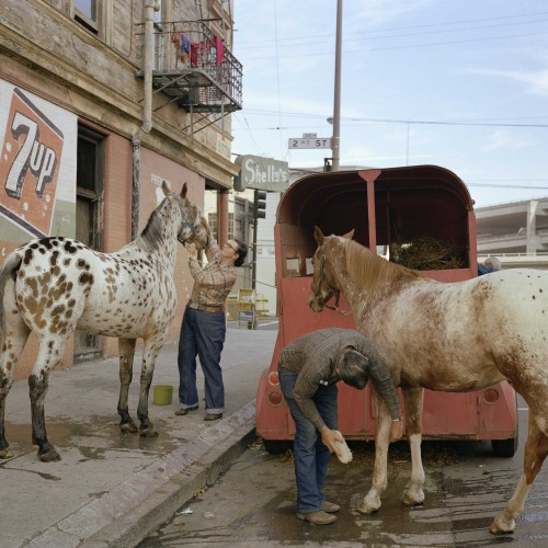Janet Delaney, Skip Wheeler and His Wife Groom Their Horses after the Veterans Day Parade, Folsom at Second Street, 1980. Archival pigment print. Image courtesy of the artist. © 2014 Janet Delaney