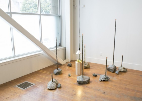 <p>Marshall Elliott, <em>Habitat</em>, 2016. Serpentinite, cement, rebar, wood, house paint, borosilicate glass, leaves of eight different species of Arctostaphylos (Manzanita), lamp, and Arctostaphylos Hookeri Franciscana, 63 x 108 x 68 in. Image courtesy of the artist.</p>