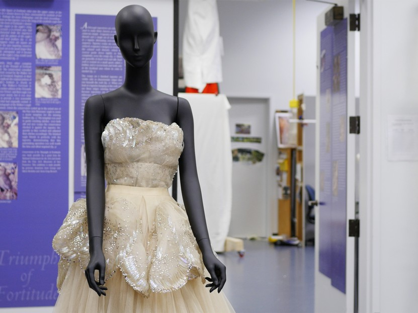 Venus by Christian Dior: Journey of a Dress textiles conservation video